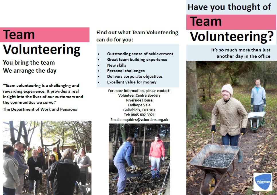team volunteering brochure1